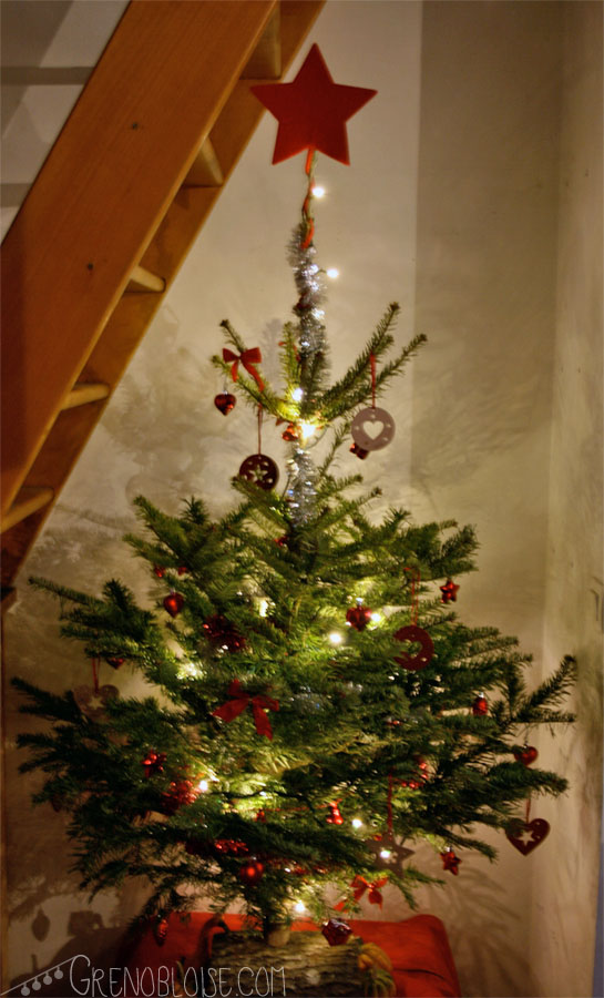 mon sapin de noël / my christmas tree