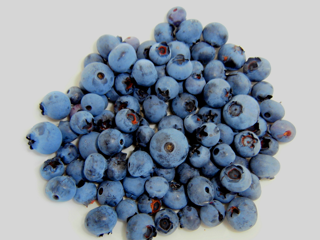 blog_may19_blueberries